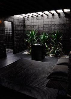 Love my Black, even in the bedroom, but with bring nature into your place makes it feel a little more open  @leannezimmermann #bedroom #blackout #nature