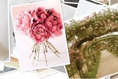 Wedding Theme Inspiration: Sweet Rose Gardens http://www.thelane.com/the-guide/themes/sweet-rose-gardens