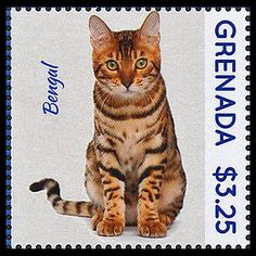 http://www.purr-n-fur.org.uk/philately/archive/img13-3/13-3_grenada-bengal.jpg