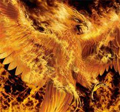 Google Image Result for http://ic.pics.livejournal.com/kitsune_hikaru/10710142/28364/original.gif
