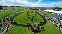 Racecourse Directory : Bath Racecourse Website, Twitter Link & Facebook Page