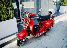 Honda Motorbikes, Insurance Quotes, Vespa, Hd Photos, Back To School, Mexico, Wasp, Hornet, Vespas