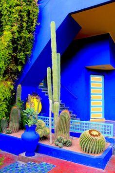 Jardins de Majorelle, Marrakech (2012). Happy place. More