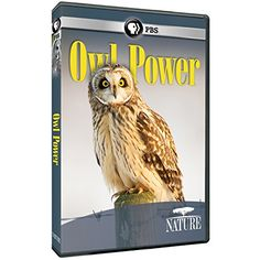 Nature: Owl Powerhttp://encore.greenvillelibrary.org/iii/encore/record/C__Rb1385936