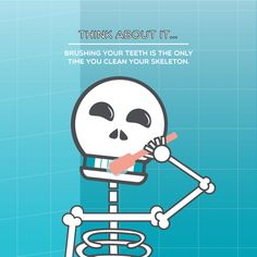 TOOTH FACT: While they are part of your skeleton, teeth aren't considered bones! Palm Valley Pediatric Dentistry