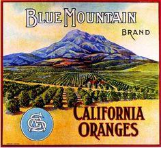 Highgrove CA, Blue Mountain Brand fruit crate label