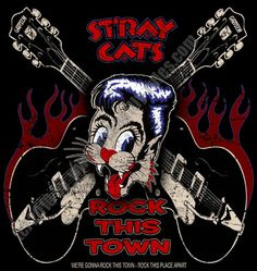 stray cats - Google 検索