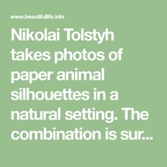 Nikolai Tolstyh takes photos of paper animal silhouettes in a natural setting. The combination is surprisingly perfect: the surroundings provide both color for the cutout and a scene to frame the animal. Papercutting as art has been practiced since at least the 6th century in China. However, it was only in the 16th or 17th century that this craft reached Europe. While this may seem recent, don't forget that paper manufacture only started in Europe in the 10th century!