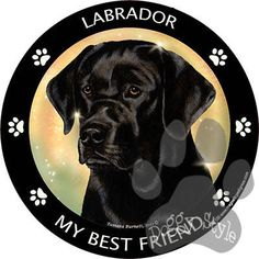 Black Labrador My Best Friend Dog Breed Magnet http://doggystylegifts.com/products/black-labrador-my-best-friend-dog-breed-magnet