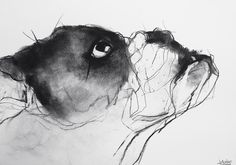 valerie davide  one of dog series