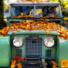 Land Rover Love + Blanket of Golden Leaves = A Perfect Fall Photo