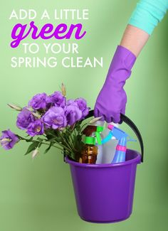 Want to keep your spring cleaning routine green? Here are four go-to spring cleaning recipes that are safe for your family, pets, and the environment.