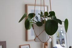 DIY: Plante-ophæng - StyleDesignCreate