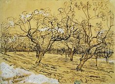 Vincent van Gogh (1853 — 1890) Orchard with Blossoming Plum Trees (The White Orchard). 1888 pen & ink heightened with opaque white. 39.5 x 53.6 cm.