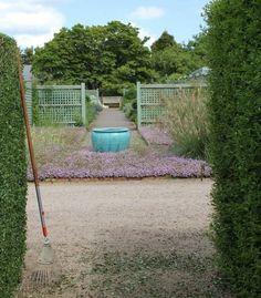 A Garden You Water Four Times a Year : Gardenista