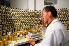 Perfumer smelling scent in perfumery, Fragonnard, Grasse, France