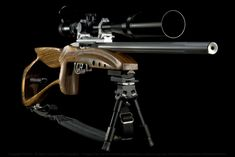 Ruger 10-22 Custom.....oh how I could do this to mine and the accuracy I could hit! Opportunities are endless