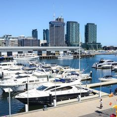 Vacation Apartment in Docklands Vacation Apartments, Rental Apartments, Melbourne Docklands, Ideal Home, New York Skyline, Condo, Explore, Building, Travel