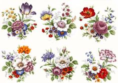 Flower Drawings 6 Traditional Wildflower Flower Select-A-Size Waterslide Ceramic Decals Bx - Vintage Flower Prints, Vintage Flowers, Plant Drawing, Decoupage Vintage, Arte Popular, Motif Floral, China Painting, Botanical Illustration, Paper Crafting
