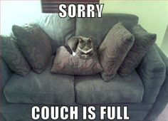 The Couch Is Full