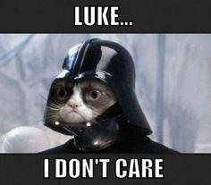 Darth Grumpy Cat Vader