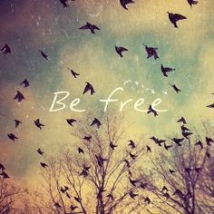 #lastpost#be free
