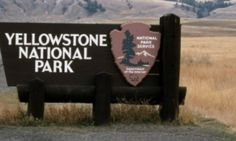 ADOLPH MUST BE GIDDY: Tourists Trying To View Yellowstone's Attractions Detained At Hotel By Armed Rangers