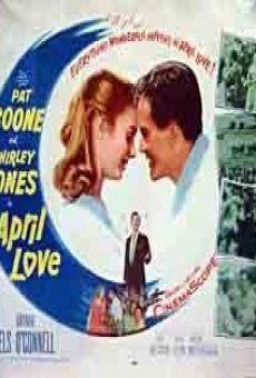 Primavera do Amor - Filmes Online