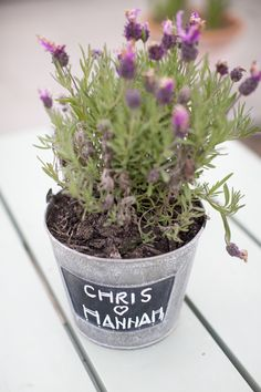 potted plant centrepiece with newlywed's names written in chalkboard