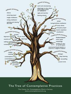 Good meditation starter.  On the Tree of Contemplative Practices, the roots symbolize the two intentions that are the foundation of all contemplative practices: cultivating awareness and developing a stronger connection to God, the divine, or inner wisdom. The roots of the tree encompass and transcend differences in the religious traditions from which many of the practices originated, and allow room for the inclusion of new practices that are being created in secular contexts.