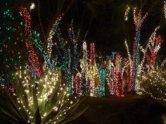 christmas lights   Outdoor Christmas Light Display