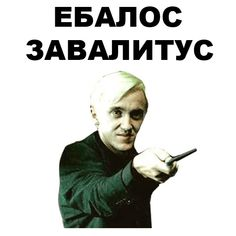Stupid Pictures, Cool Pictures, Funny Pictures, Stupid Memes, Funny Memes, Jokes, Hello Memes, Happy Memes, Russian Memes