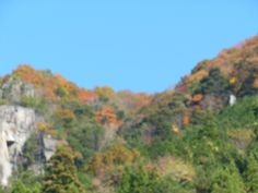 Fall... What is interesting about this place is that trees are on rocky area of the mountain.  Have any idea??