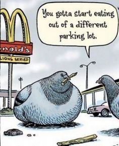 #dieting #diet #weightloss #humor #funny #lol www.fdork.com