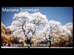 De ce porti tu povara ~ Mariana Somesan - YouTube