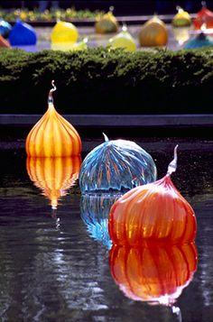 DALE CHIHULY  WALLA WALLAS, 2006  APRIL 30, 2006 - JANUARY 1, 2007  MISSOURI BOTANICAL GARDEN  ST. LOUIS, MISSOURI