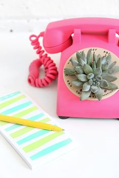 Even though a rotary phone is something you might think you'll never own, this DIY planter might prove you wrong.