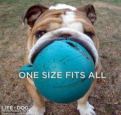 One size fits all.