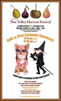 Hurry in to Noe Valley TODAY for Harvest Festival! Sat Oct 18th • 10am-5pm Stop by Noe Valley Ambiance to enjoy refreshments and an additional 20% OFF Sale Items! This family friendly festival will have art, crafts, pumpkins, bands, dog costume contest and even a dunk tank!   For more info visit: http://www.noevalleyharvestfestival.com