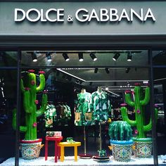 #dolcegabbana #vitrinesdumonde #vitrine #art #berlin #merchandising #visualmerchandising #berlin #like4like #windowdisplay #cactus #green #july #summer #summer2016 #sunnyday