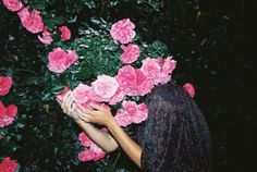 lukasz wierzbowski. Hiding in the pink roses.