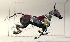 Collaborative viewing at the digital horse running