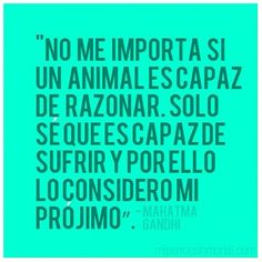 """""""No me importa si un animal es capaz de razonar. Solo sé que es capaz de sufrir y por ello lo considero mi prójimo."""" - Mahatma Gandhi"""