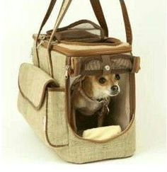 Snoozer Eco-Friendly Pet Carrier by Snoozer, http://www.amazon.com/dp/B001QUOVYO/ref=cm_sw_r_pi_dp_XbbTqb1ZANS79