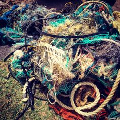 These fishing nets are all over our beaches and floating in the oceans.