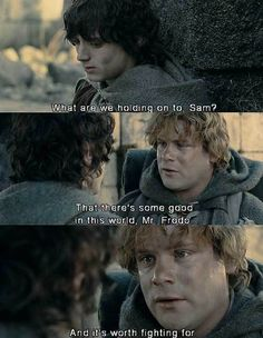 """""""There is some good left in this world, Mr Frodo, and that's worth fighting for."""" - I think this line sums up the whole movie... <3"""
