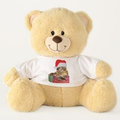 Maine Coon Cat Santa & Gifts on Teddy Bear Toy - cat cats kitten kitty pet love pussy
