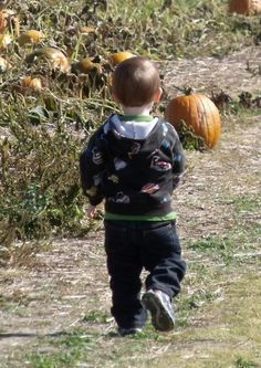 Pickin' the perfect punkin'!