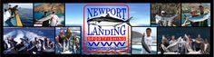 Newport Landing (Whale Watching Cruise)  Newport Beach, California  December 2011