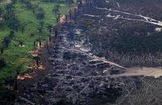 Image result for niger delta before oil